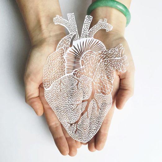 i-create-hand-cut-paper-versions-of-organs-58a4cf6e168ce__880